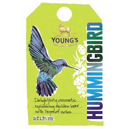 22-Youngs-Hummingbird.png
